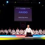 aikido-dojo-nitra-vystupenie-vecer-bojovych-umeni-2013-107