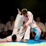 aikido-dojo-nitra-vystupenie-vecer-bojovych-umeni-2013-11