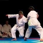 aikido-dojo-nitra-vystupenie-vecer-bojovych-umeni-2013-112
