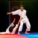 aikido-dojo-nitra-vystupenie-vecer-bojovych-umeni-2013-114