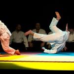 aikido-dojo-nitra-vystupenie-vecer-bojovych-umeni-2013-119