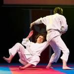 aikido-dojo-nitra-vystupenie-vecer-bojovych-umeni-2013-12