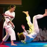 aikido-dojo-nitra-vystupenie-vecer-bojovych-umeni-2013-121