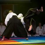 aikido-dojo-nitra-vystupenie-vecer-bojovych-umeni-2013-122