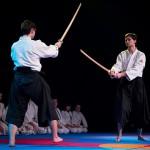 aikido-dojo-nitra-vystupenie-vecer-bojovych-umeni-2013-124