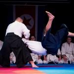 aikido-dojo-nitra-vystupenie-vecer-bojovych-umeni-2013-13