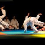 aikido-dojo-nitra-vystupenie-vecer-bojovych-umeni-2013-131