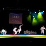 aikido-dojo-nitra-vystupenie-vecer-bojovych-umeni-2013-135