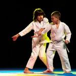 aikido-dojo-nitra-vystupenie-vecer-bojovych-umeni-2013-14