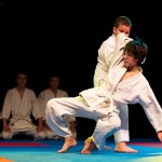 aikido-dojo-nitra-vystupenie-vecer-bojovych-umeni-2013-17