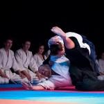 aikido-dojo-nitra-vystupenie-vecer-bojovych-umeni-2013-18