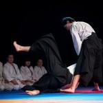 aikido-dojo-nitra-vystupenie-vecer-bojovych-umeni-2013-19