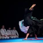 aikido-dojo-nitra-vystupenie-vecer-bojovych-umeni-2013-24