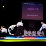 aikido-dojo-nitra-vystupenie-vecer-bojovych-umeni-2013-28