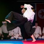 aikido-dojo-nitra-vystupenie-vecer-bojovych-umeni-2013-29