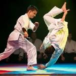 aikido-dojo-nitra-vystupenie-vecer-bojovych-umeni-2013-38