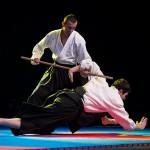 aikido-dojo-nitra-vystupenie-vecer-bojovych-umeni-2013-40