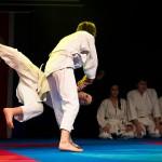 aikido-dojo-nitra-vystupenie-vecer-bojovych-umeni-2013-43