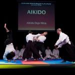 aikido-dojo-nitra-vystupenie-vecer-bojovych-umeni-2013-47