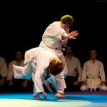 aikido-dojo-nitra-vystupenie-vecer-bojovych-umeni-2013-48