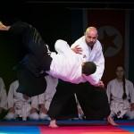 aikido-dojo-nitra-vystupenie-vecer-bojovych-umeni-2013-5