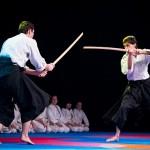 aikido-dojo-nitra-vystupenie-vecer-bojovych-umeni-2013-50