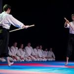 aikido-dojo-nitra-vystupenie-vecer-bojovych-umeni-2013-51