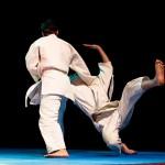 aikido-dojo-nitra-vystupenie-vecer-bojovych-umeni-2013-52