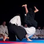aikido-dojo-nitra-vystupenie-vecer-bojovych-umeni-2013-53