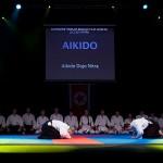 aikido-dojo-nitra-vystupenie-vecer-bojovych-umeni-2013-54