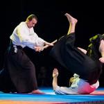 aikido-dojo-nitra-vystupenie-vecer-bojovych-umeni-2013-55