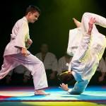 aikido-dojo-nitra-vystupenie-vecer-bojovych-umeni-2013-56