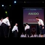 aikido-dojo-nitra-vystupenie-vecer-bojovych-umeni-2013-57