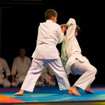 aikido-dojo-nitra-vystupenie-vecer-bojovych-umeni-2013-59