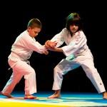 aikido-dojo-nitra-vystupenie-vecer-bojovych-umeni-2013-60