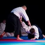 aikido-dojo-nitra-vystupenie-vecer-bojovych-umeni-2013-61