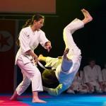 aikido-dojo-nitra-vystupenie-vecer-bojovych-umeni-2013-62