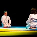 aikido-dojo-nitra-vystupenie-vecer-bojovych-umeni-2013-64