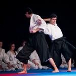 aikido-dojo-nitra-vystupenie-vecer-bojovych-umeni-2013-67
