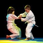 aikido-dojo-nitra-vystupenie-vecer-bojovych-umeni-2013-68
