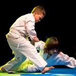 aikido-dojo-nitra-vystupenie-vecer-bojovych-umeni-2013-71