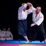 aikido-dojo-nitra-vystupenie-vecer-bojovych-umeni-2013-72