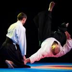 aikido-dojo-nitra-vystupenie-vecer-bojovych-umeni-2013-79