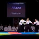 aikido-dojo-nitra-vystupenie-vecer-bojovych-umeni-2013-85