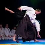aikido-dojo-nitra-vystupenie-vecer-bojovych-umeni-2013-86
