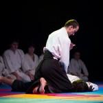aikido-dojo-nitra-vystupenie-vecer-bojovych-umeni-2013-88
