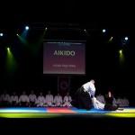 aikido-dojo-nitra-vystupenie-vecer-bojovych-umeni-2013-89