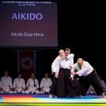 aikido-dojo-nitra-vystupenie-vecer-bojovych-umeni-2013-90